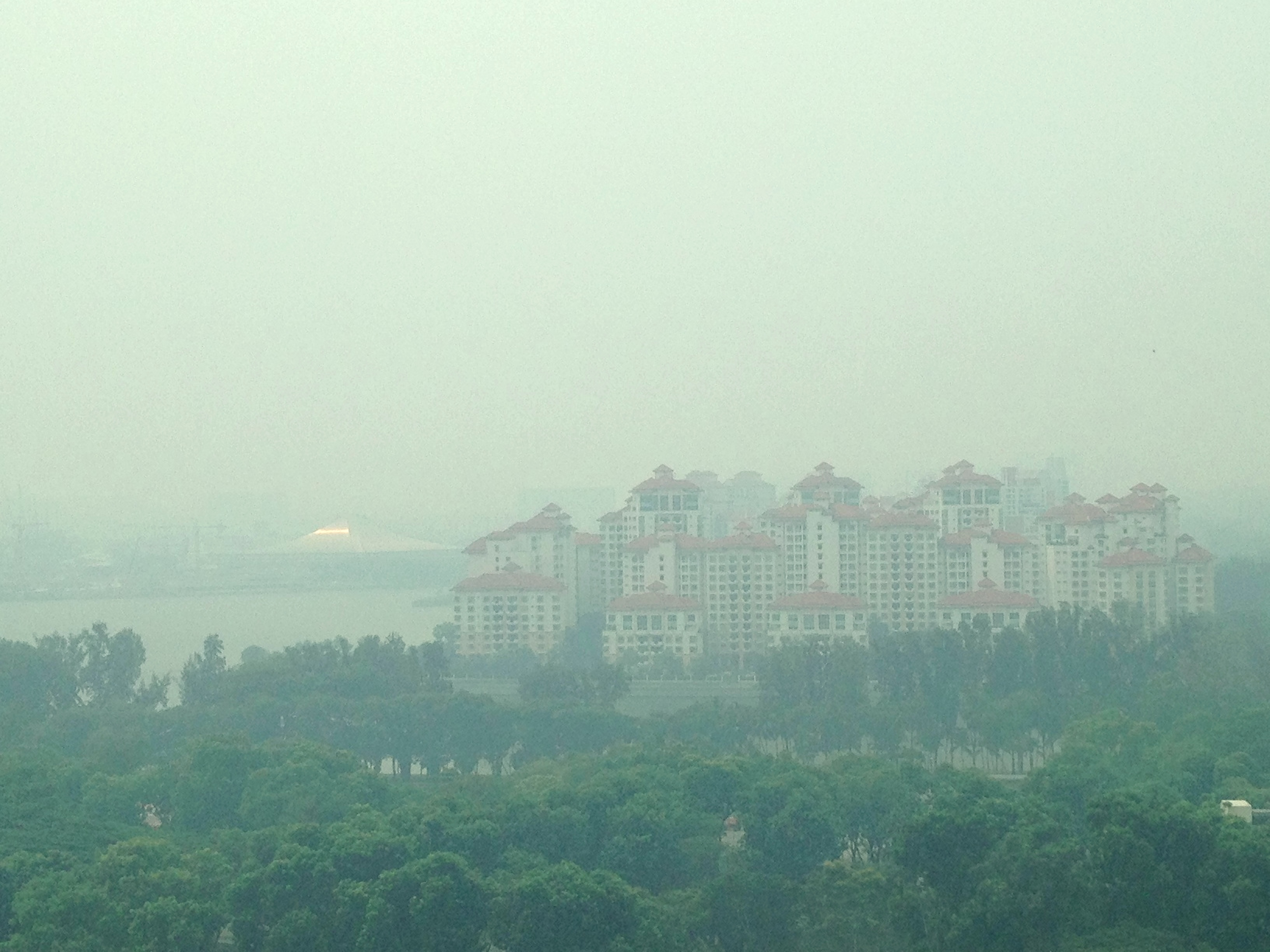 haze in singapore 26092015 singapore has sued five indonesian companies blamed for farm and plantation fires causing serious air pollution over the city-state, which is a global.