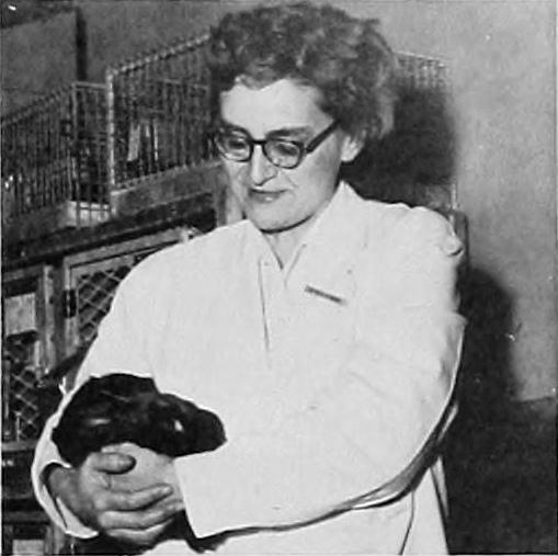 image of Helen Ranney