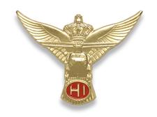 Helicopter Instructor.jpg
