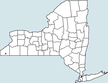 Marijka Lampard Jamestown Ny Map
