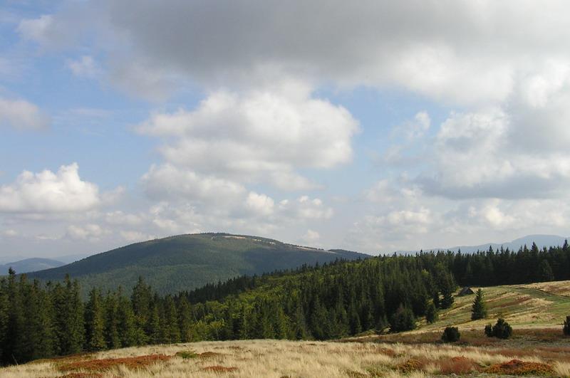 Jalowiec Widok z Lachow Gronia