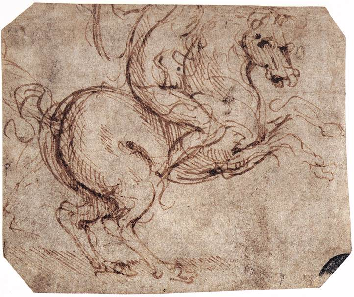 Image result for study of horse and rider leonardo da vinci