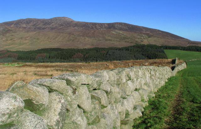 Mourne Wall near Annalong Wood - geograph.org.uk - 1138055
