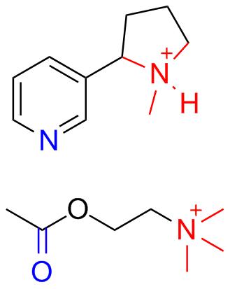File:Nicotine_acetylcholine