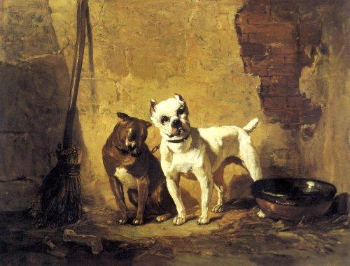 Best French Bulldog Dog Food