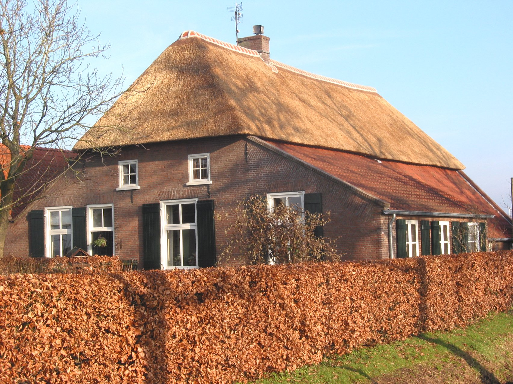 File rieten dak old wikimedia commons for Traditional farmhouse