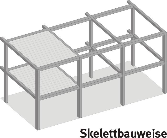 Glasses Frame Structure : skeleton-frame structure