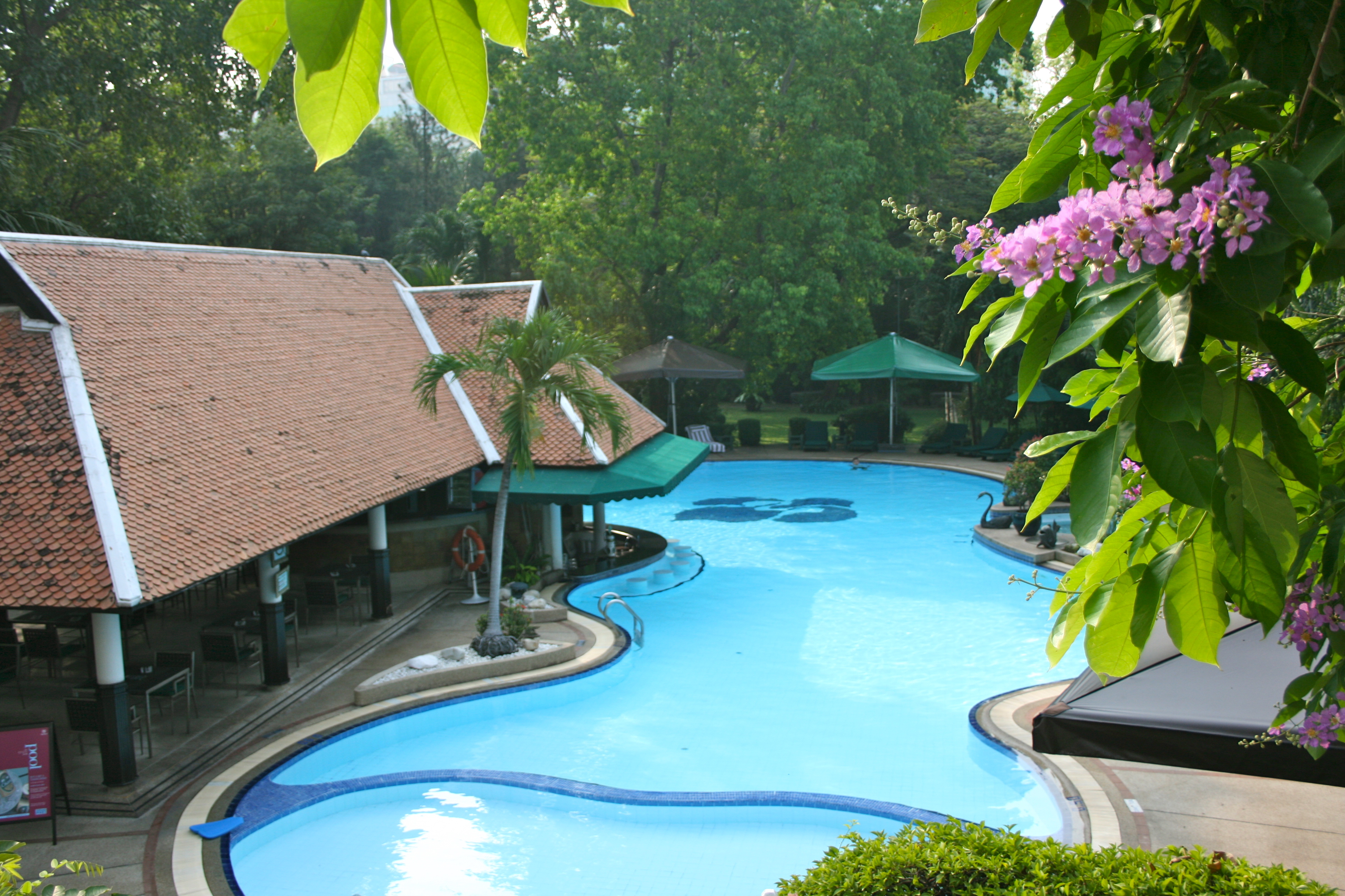 File swimming pool royal orchid sheraton riverview hotel - Riverview swimming pool pittsburgh pa ...
