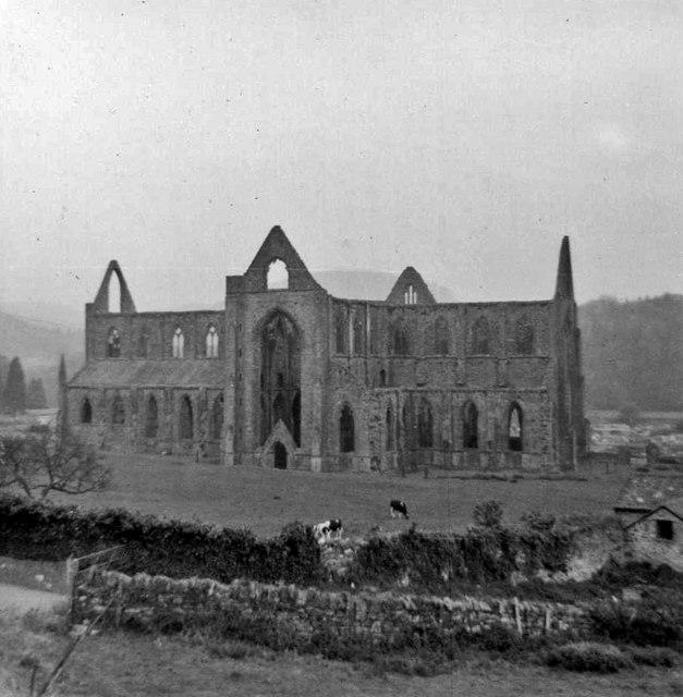 tintern abbey paraphrase