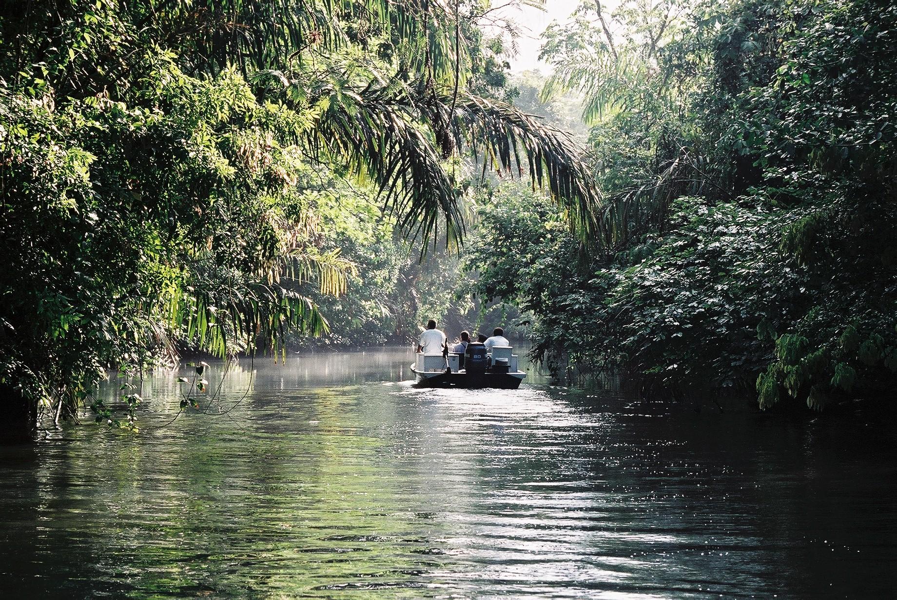 Boat trip into the canales de Parque Nacional Tortuguero, Limón, Costa Rica