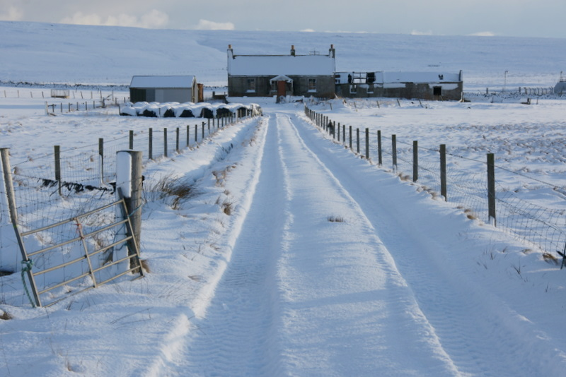 File:Track to an abandoned crofthouse, Baltasound - geograph.org.uk - 1725735.jpg