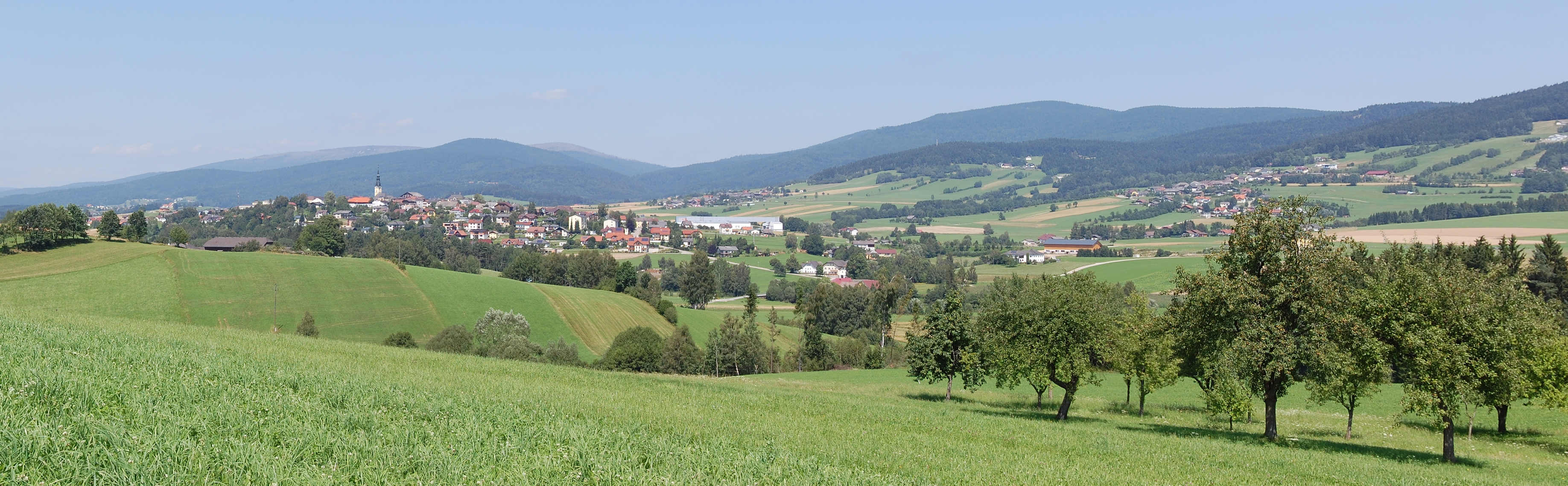 Ulrichsberg frau single, Sexanzeigen in Marbach am Neckar