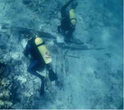 File:Underwater Archaeologists, 19th Century Shipwreck.png