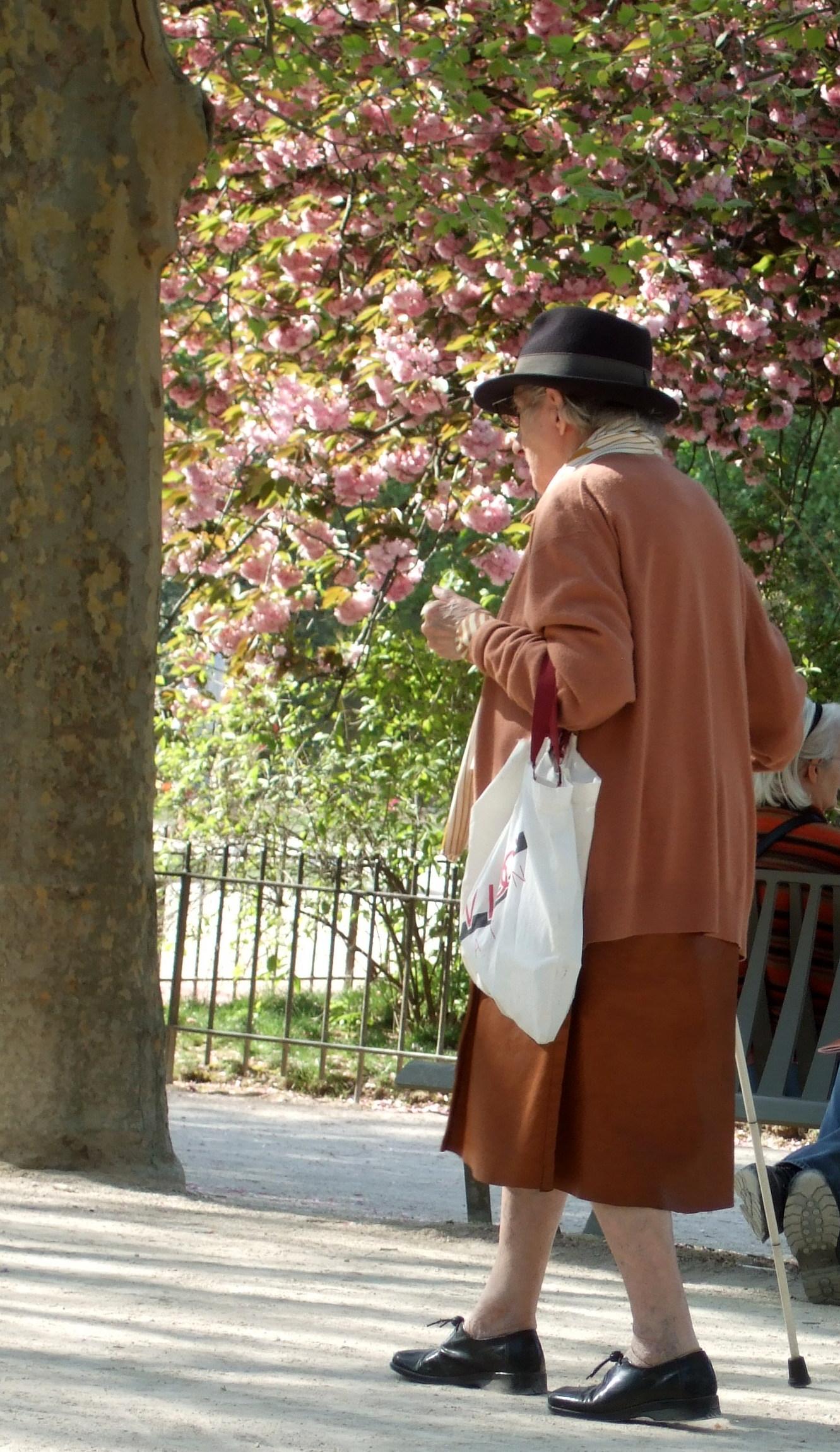 File une parisienne au jardin des plantes 24 avril 2010 for Au jardin des plantes chambery