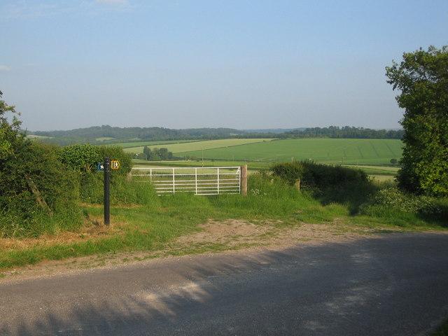 Wessex Ridgeway - geograph.org.uk - 458186