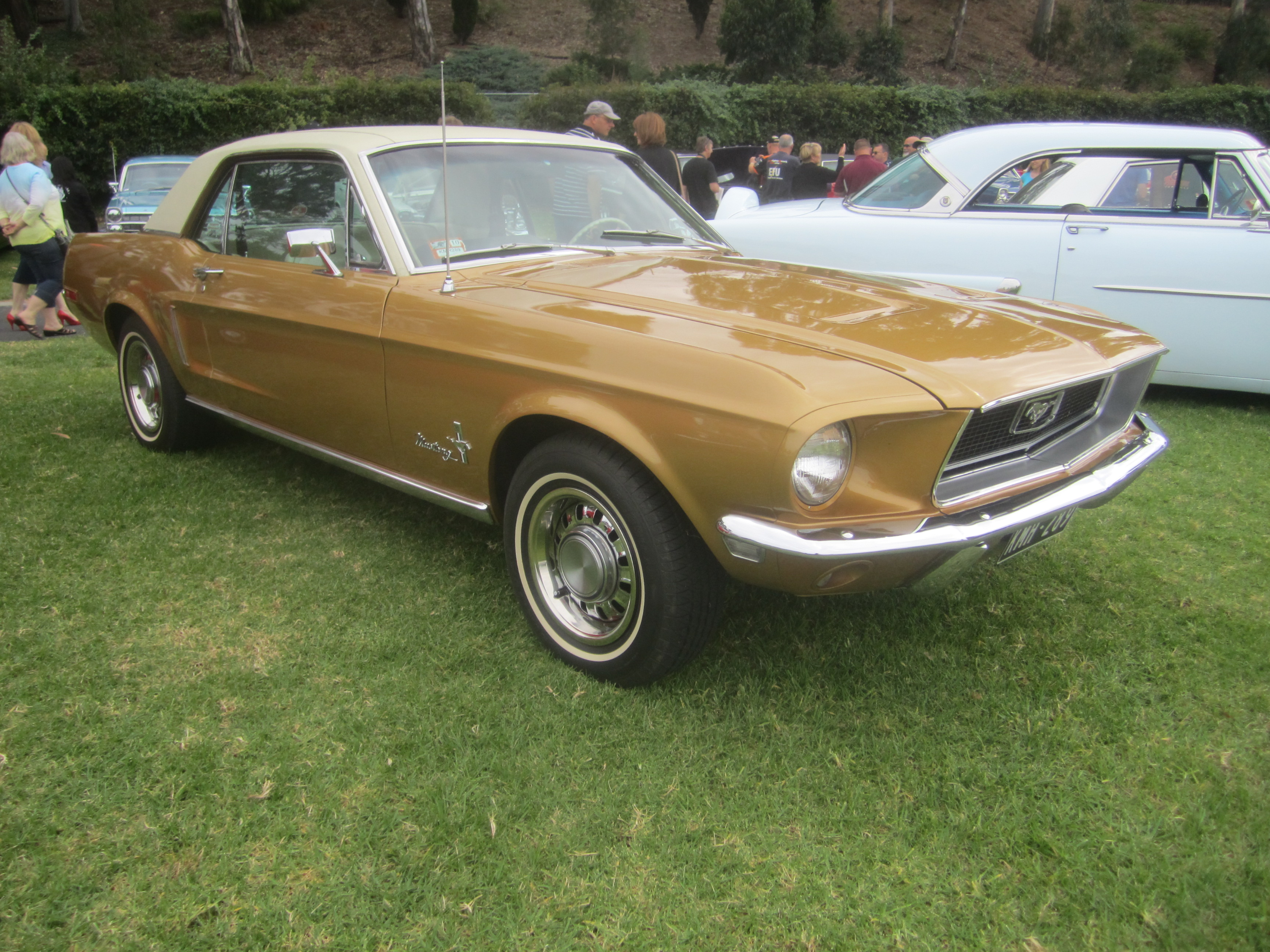 1968 Ford Mustang 390 Gt 2 2 Fastback >> File:1968 Ford Mustang Hardtop.jpg - Wikimedia Commons