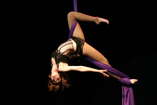 Aerial Silk Artist Aerial Silk Performer