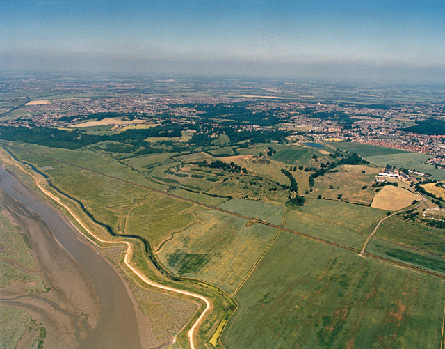 Aerial view of Hadleigh Country Park, western end - geograph.org.uk - 1564208