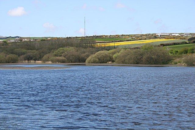 An Arm of Stithians Reservoir - geograph.org.uk - 159682
