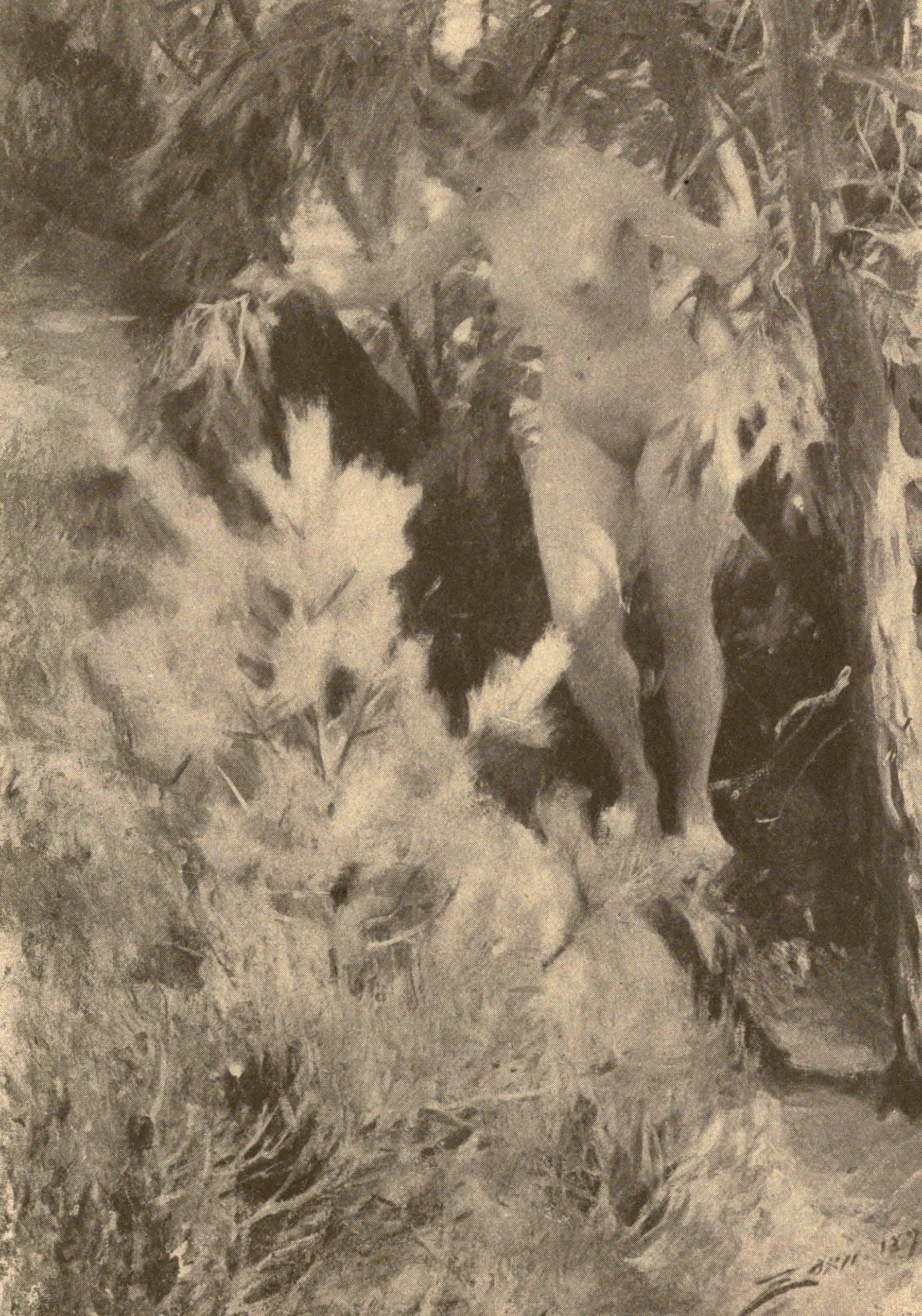 naked boys Vintage nude