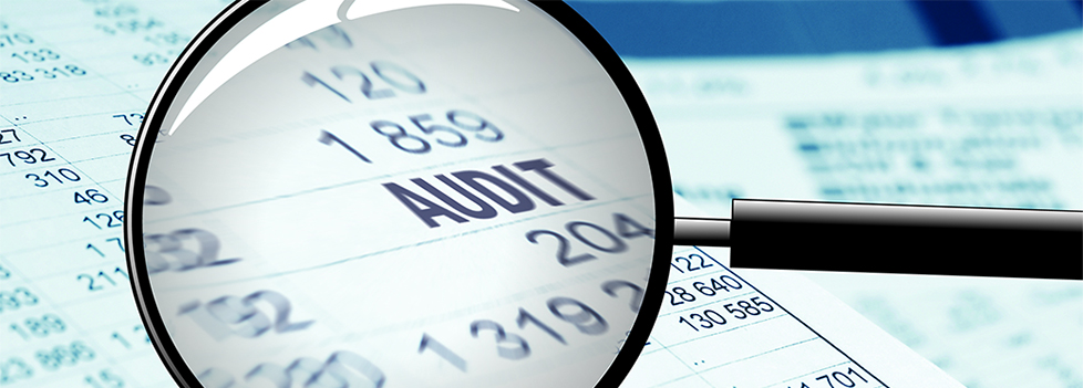 Audit Meaning: Definitions, Features,Types of Audit