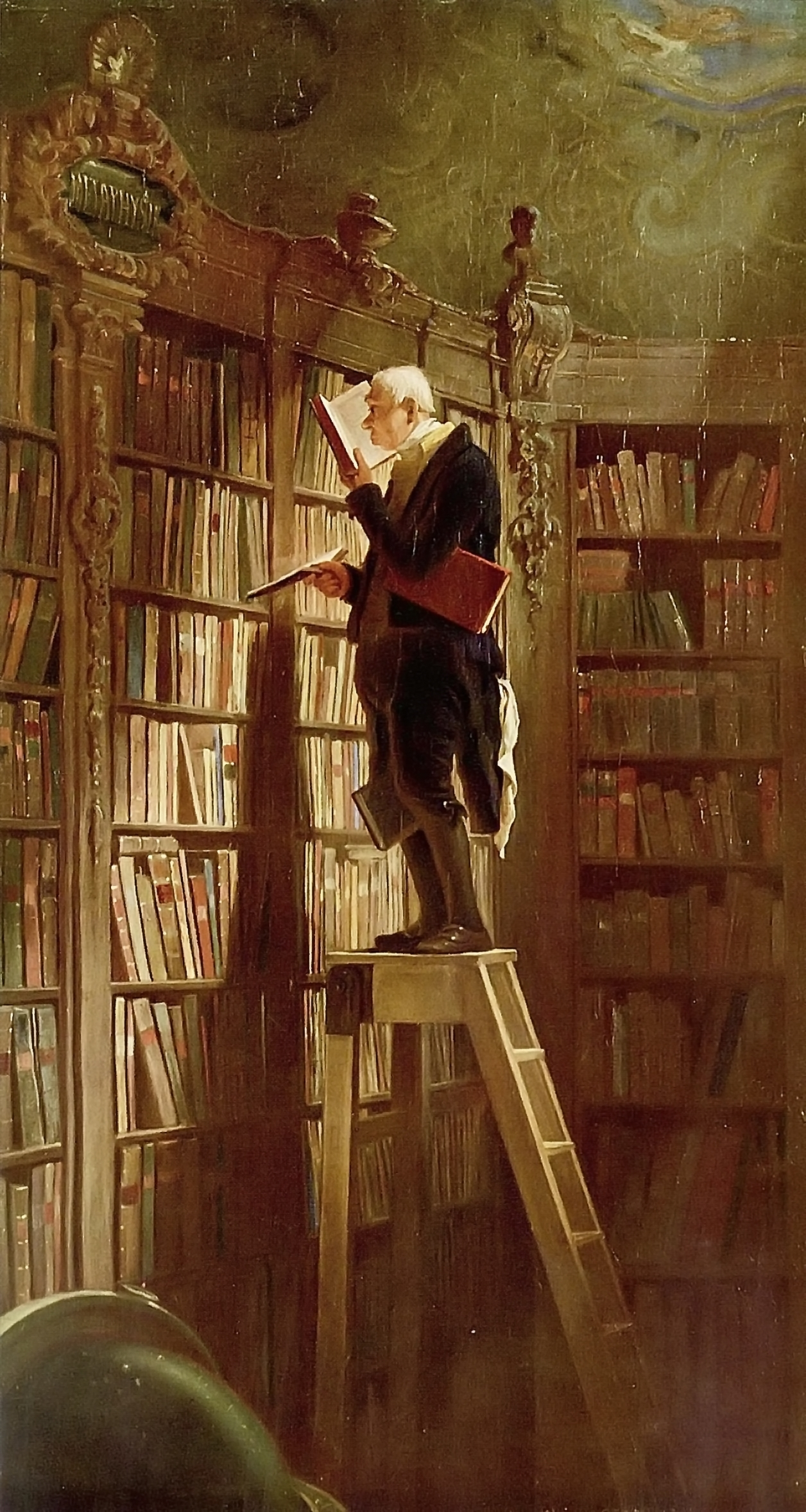 Image result for Carl Spitzweg bookworm