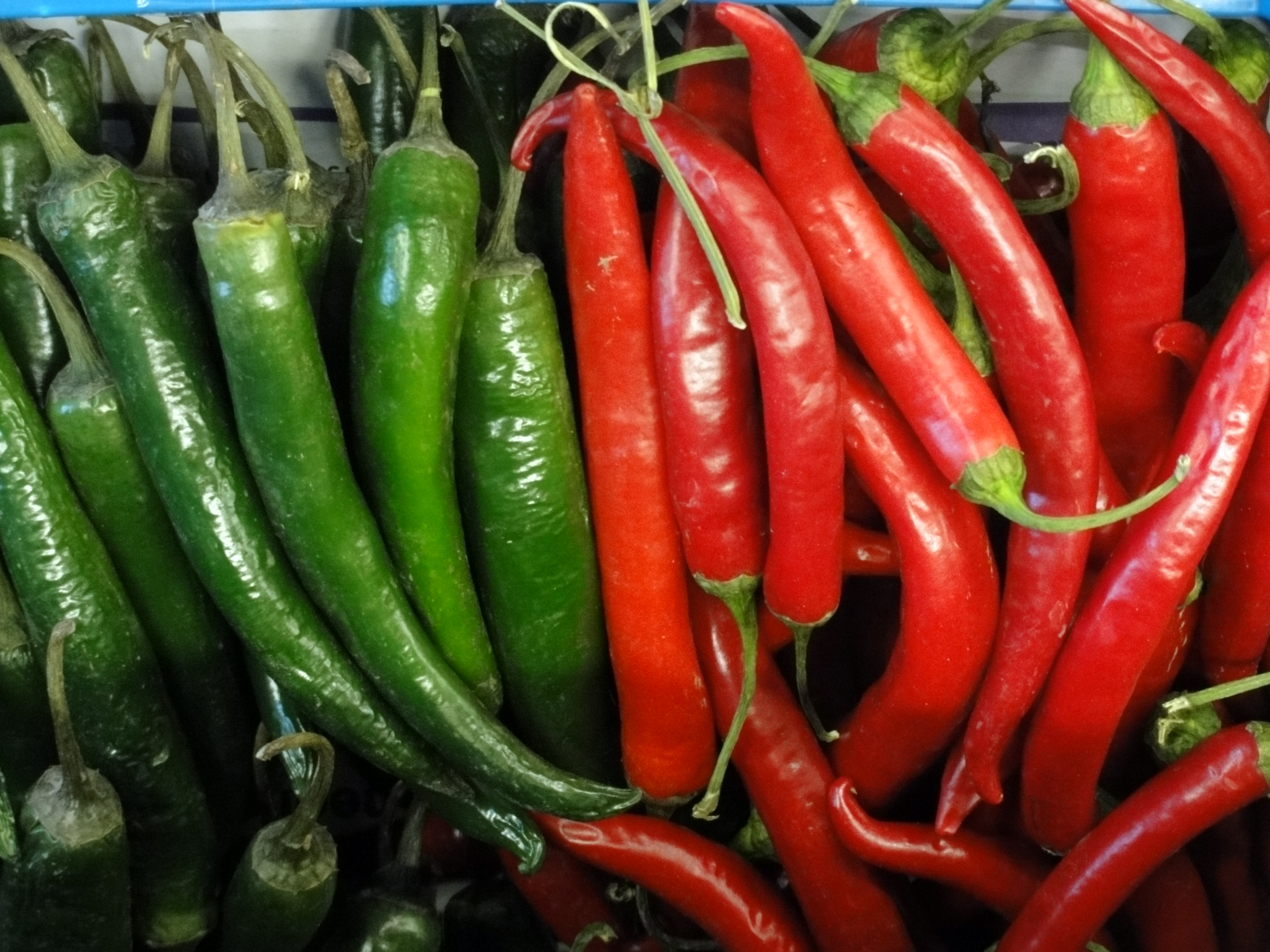 File:Chillies red and green.jpg - Wikimedia Commons
