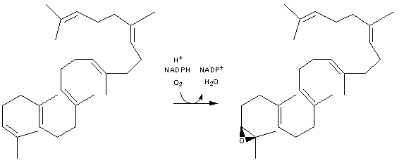 Resim:Cholesterol-Synthesis-Reaction11.png