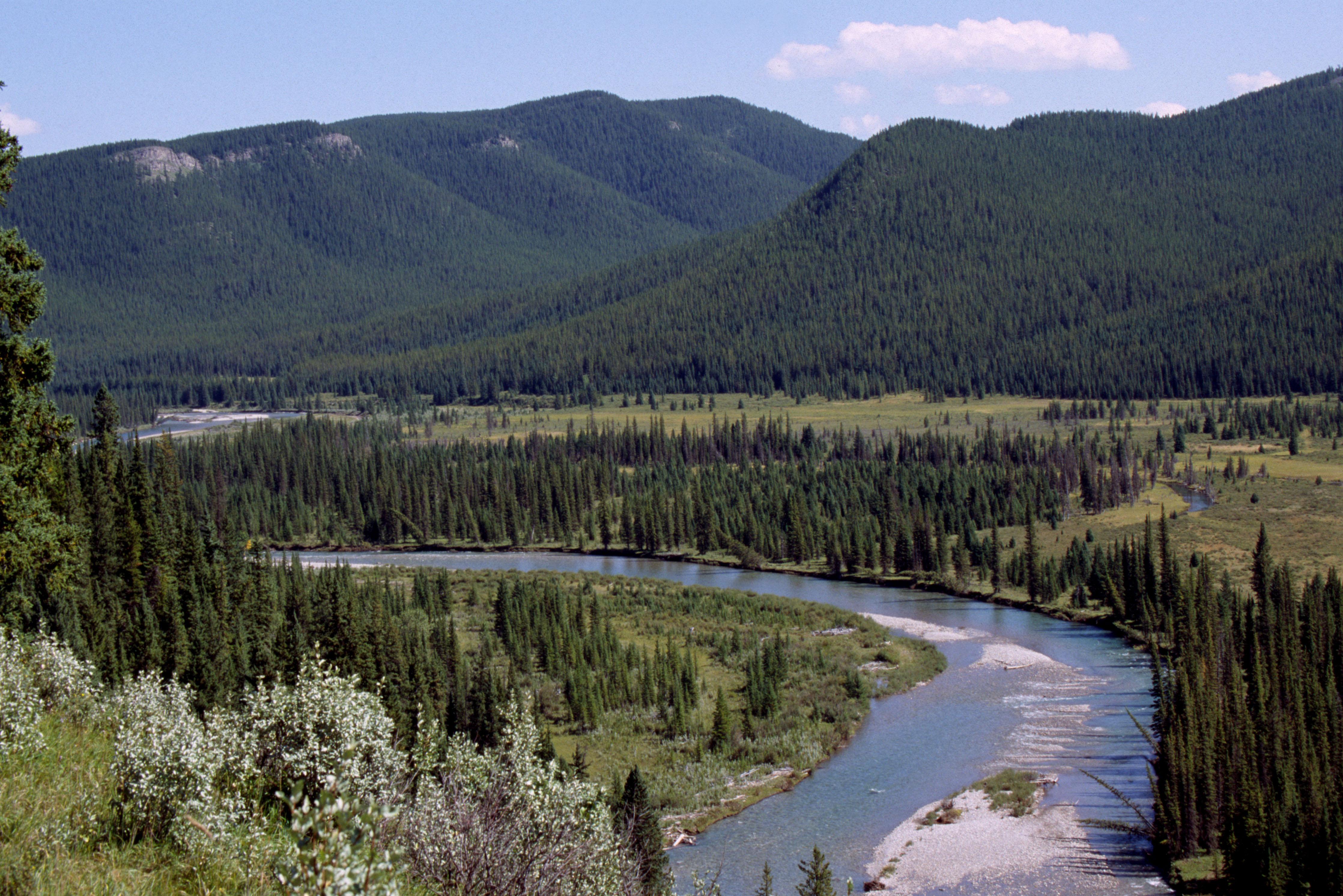 Rocky Mountain Natural Health Clinic Bozeman Mt