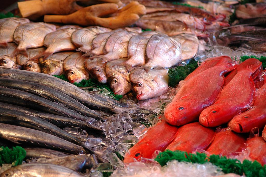 File dc fish market display at the wikimedia for Washington dc fish market