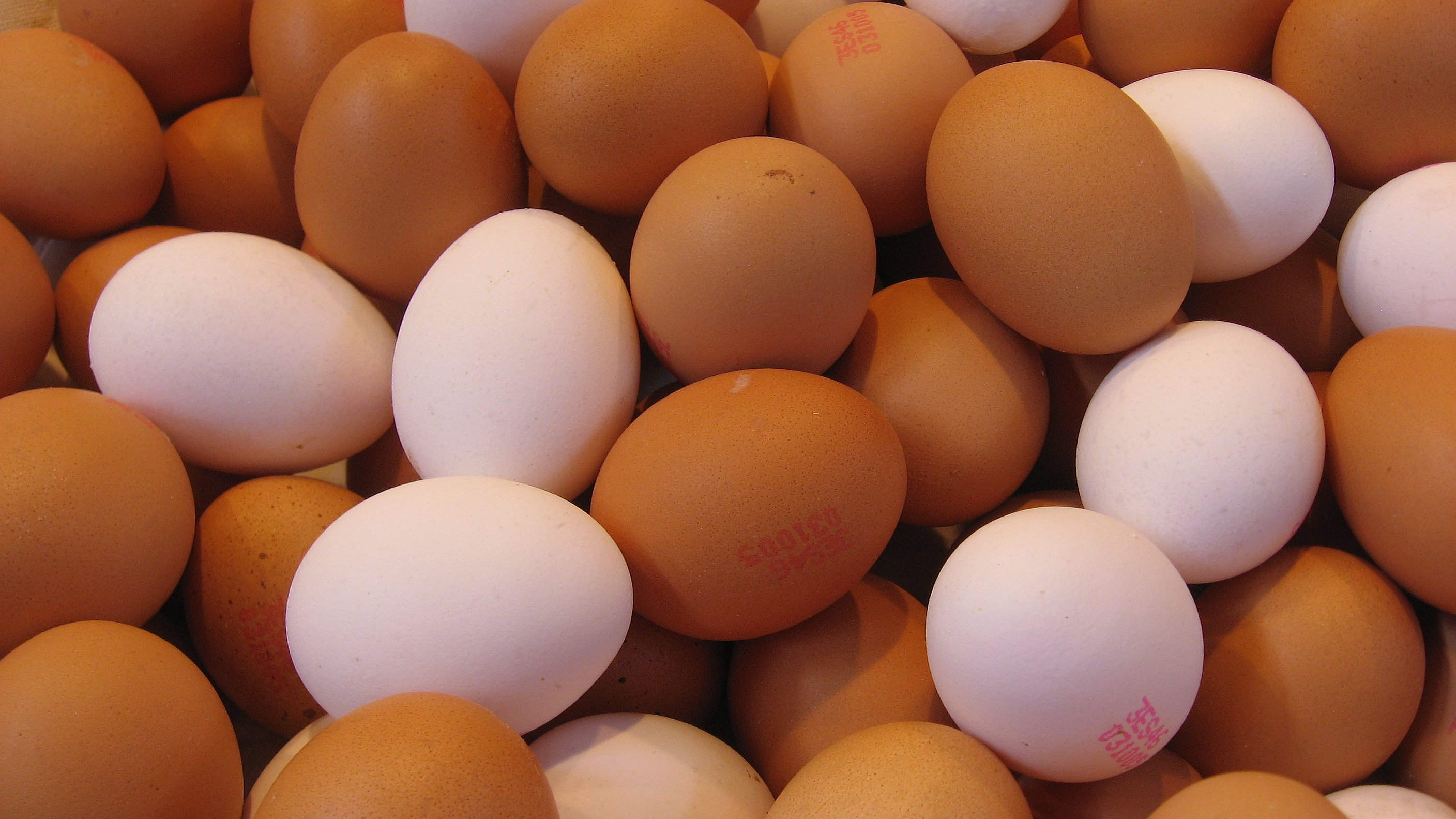 Gobs of eggs