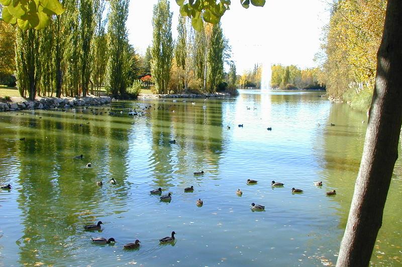 Archivo:El Soto Lago.jpg
