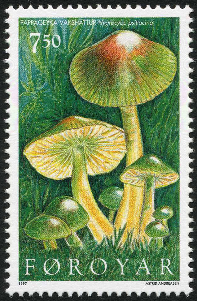 Parrot toadstools on a Faroe Islands stamp
