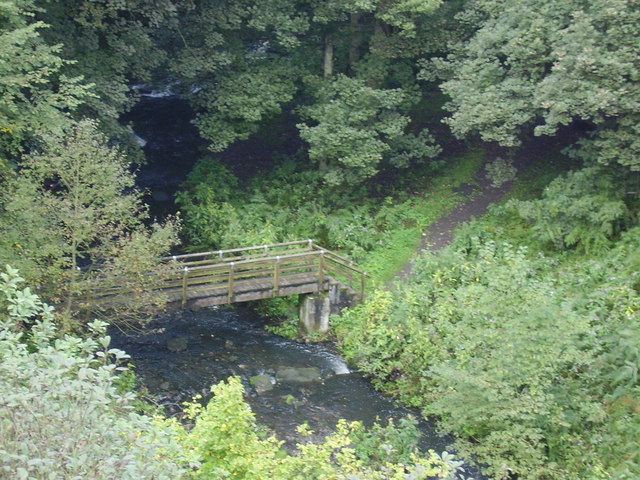 Footbridge seen from Causey Arch - geograph.org.uk - 246787