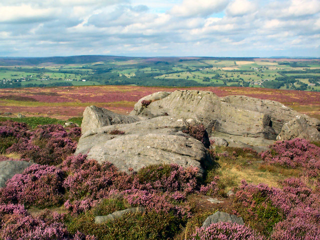Green Crag, Ilkley Moor - geograph.org.uk - 44780