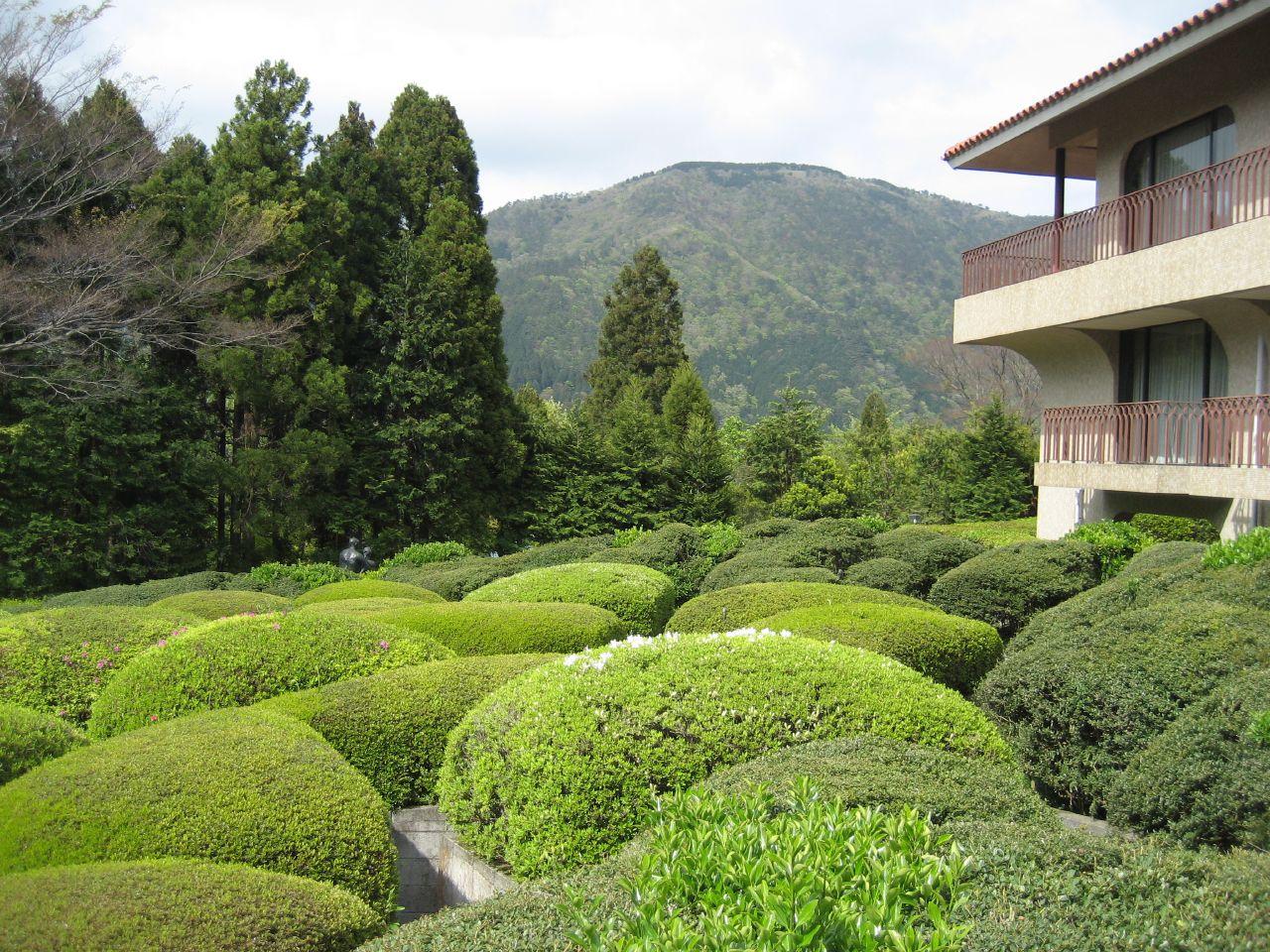 File:Hakone open air museum (8).jpg - Wikimedia Commons