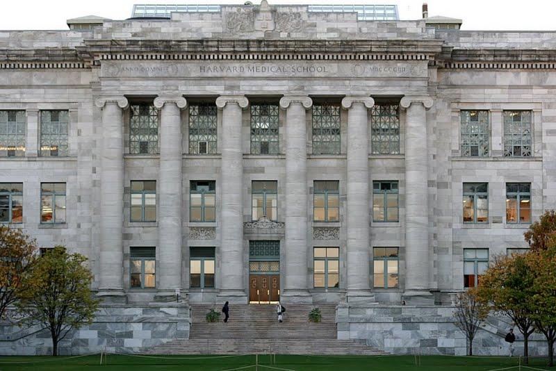 Harvard medical school admission essay
