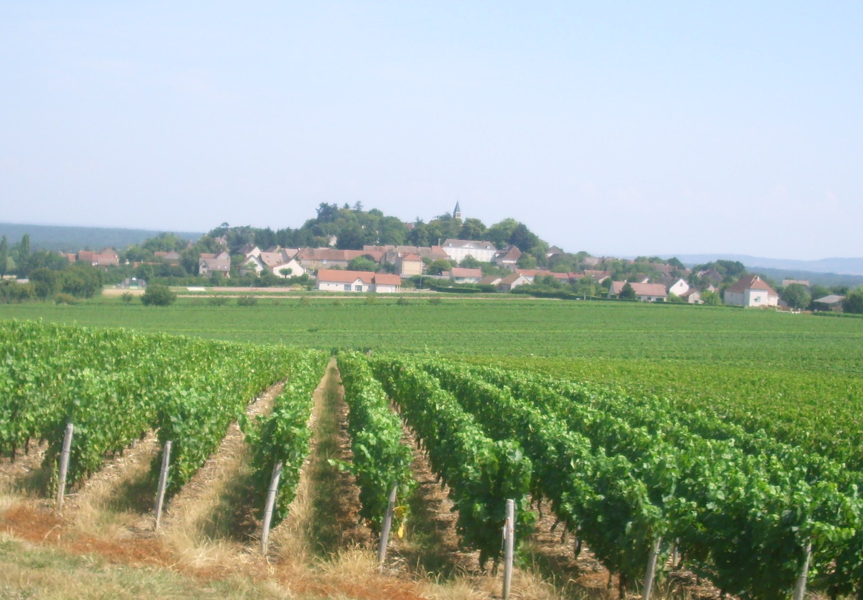 Jully-lès-Buxy - Wikipedia