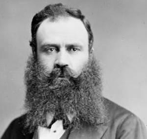 A cultivated beard
