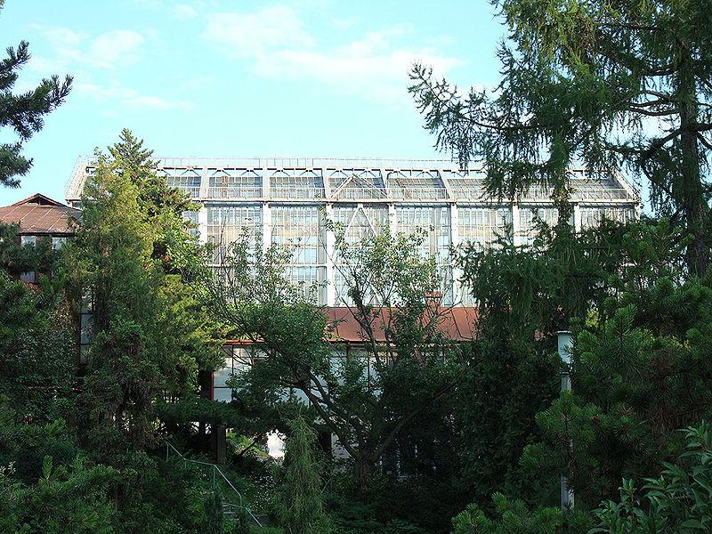 Jardin botanique fomine de kiev wikip dia for Alexandre jardin wikipedia