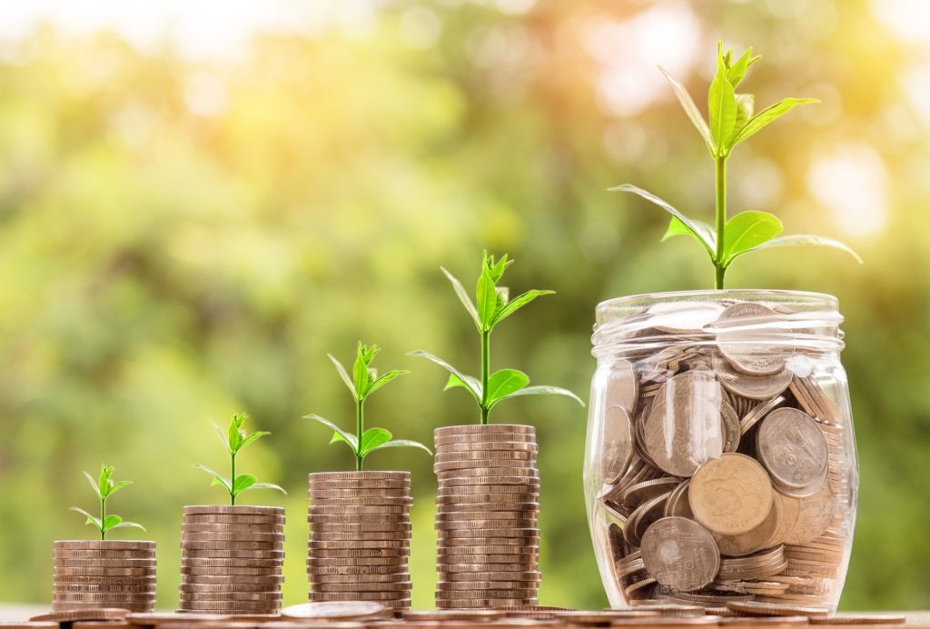 File:Money saving growth.jpg - Wikimedia Commons