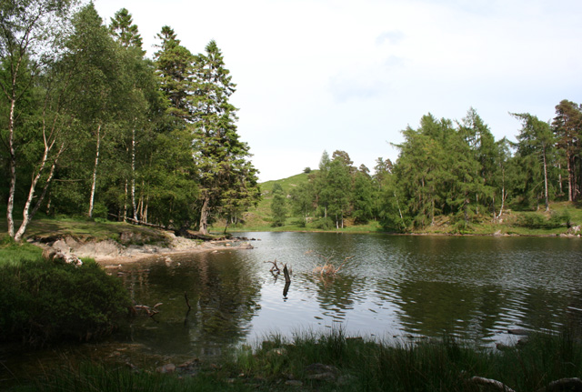 Northern head of Tarn Hows - geograph.org.uk - 839043