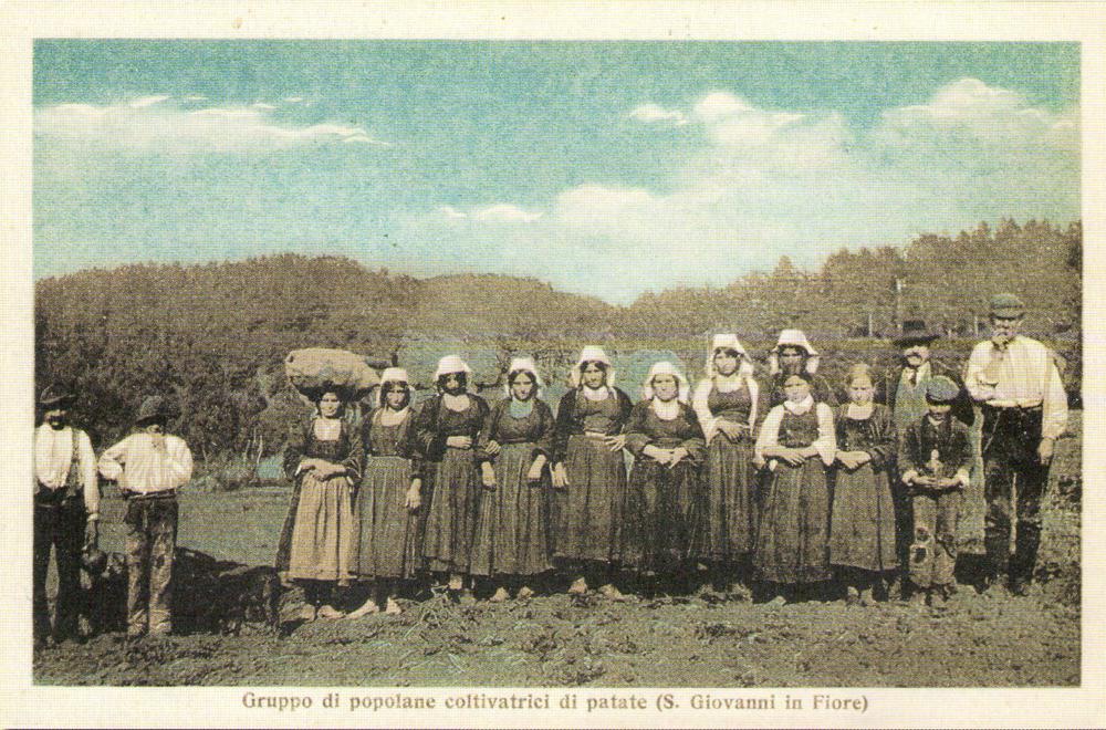 File pacchiane alla raccolta delle wikimedia for Raccolta patate