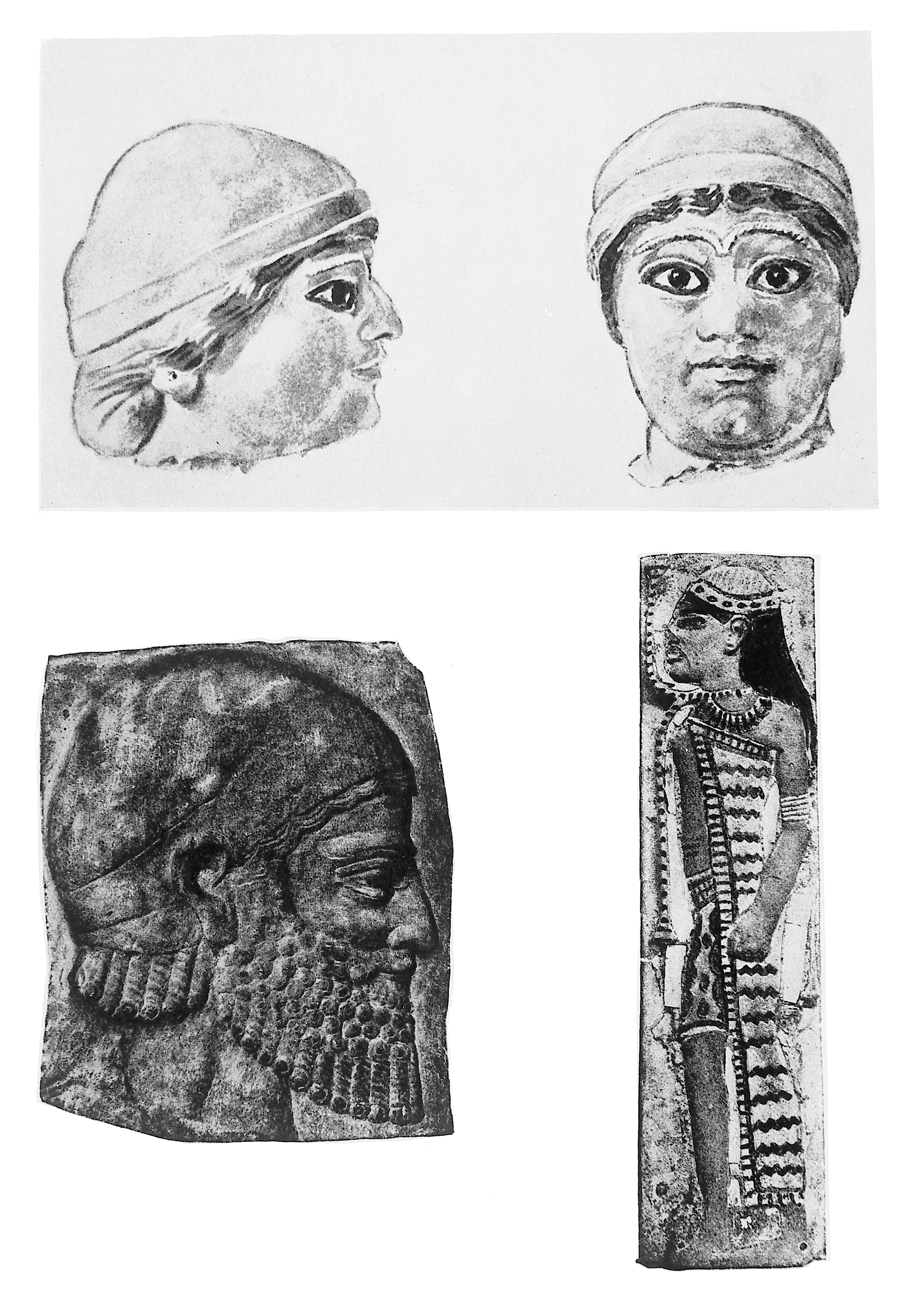 File Physical Anthropology Of Semitic Peoples Wellcome M0008446 Jpg