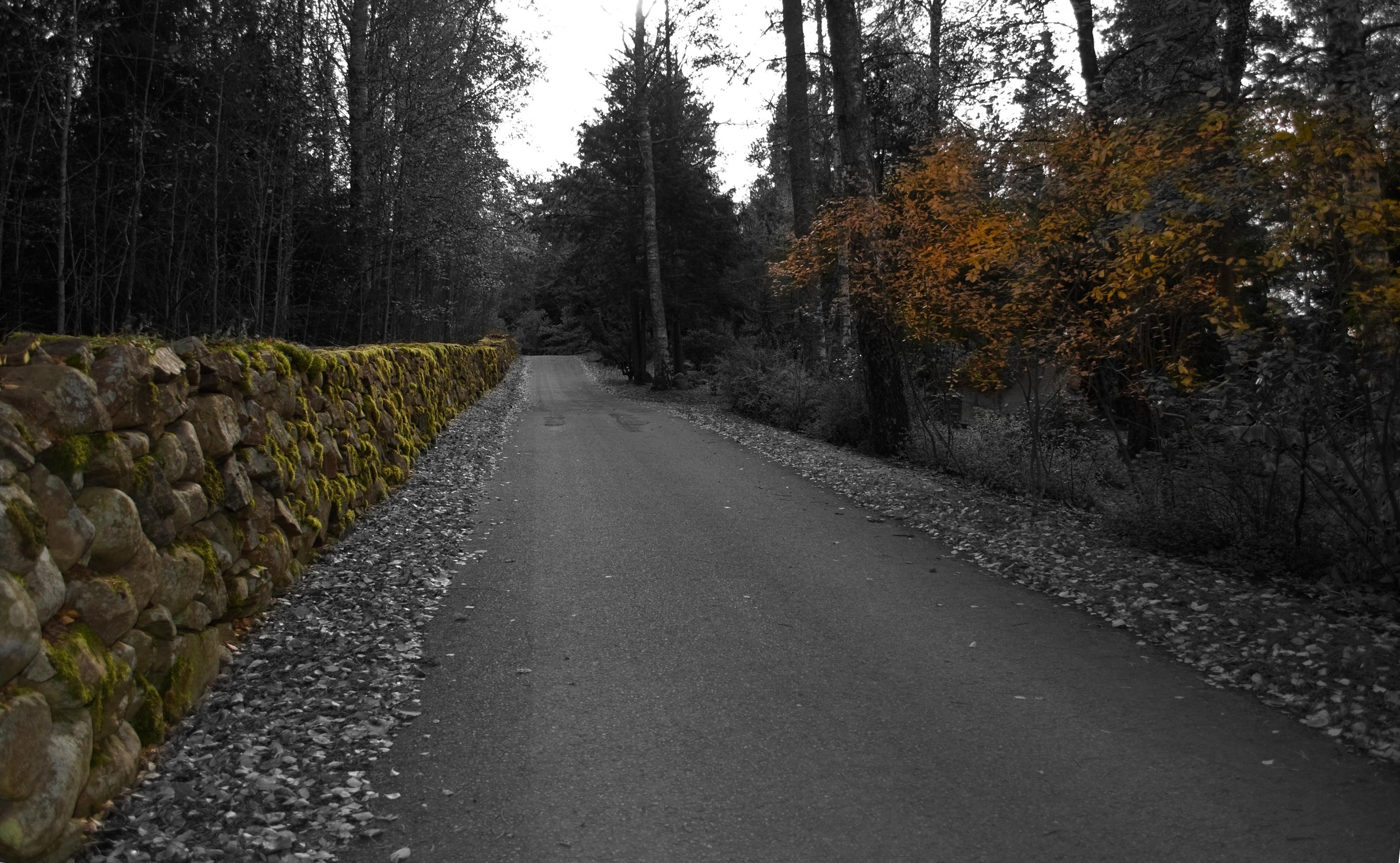 File Road At Rud Cemetery Karlstad Sweden Jpg Wikimedia