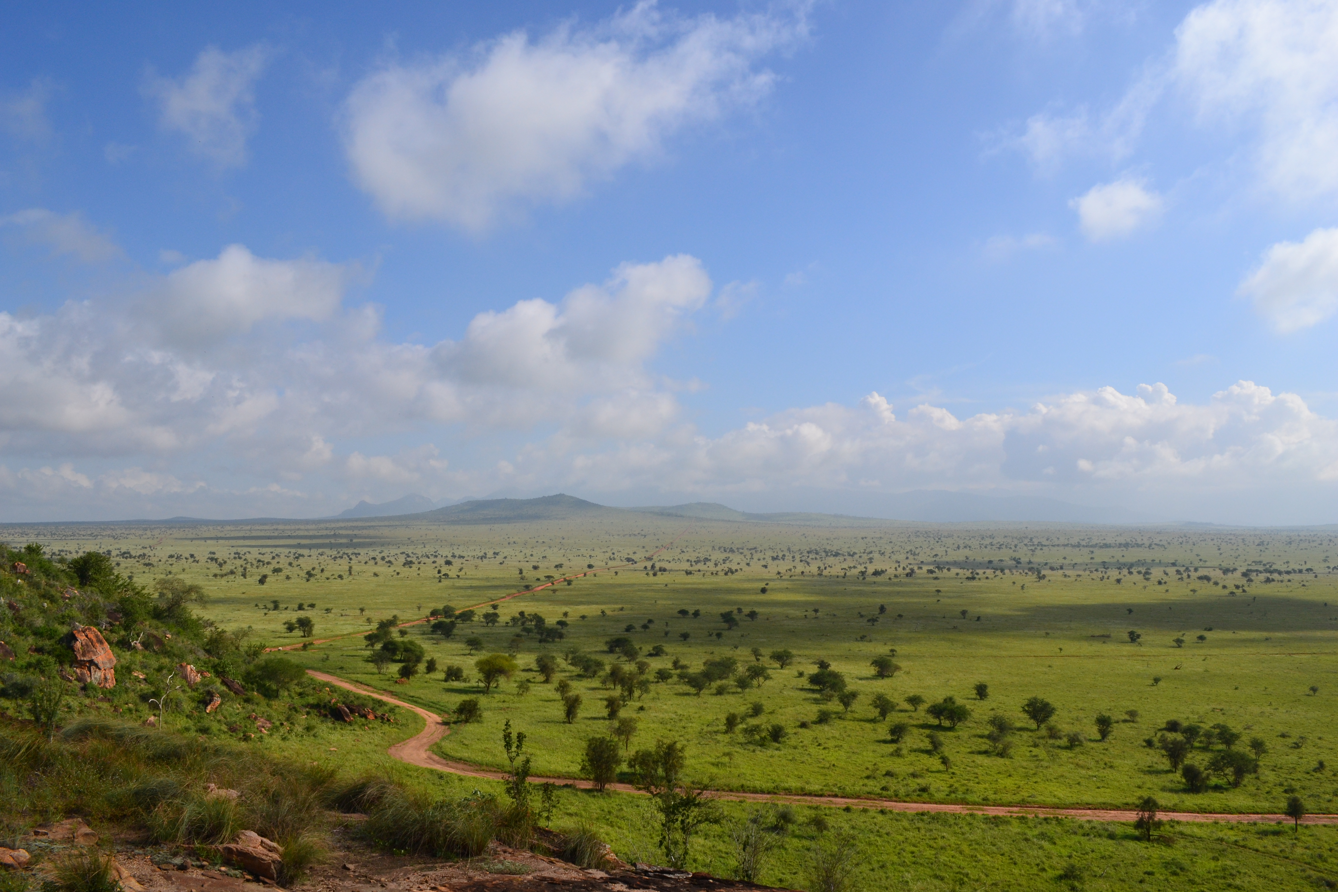 FileSavanna Towards The North East From Lion Rock In The