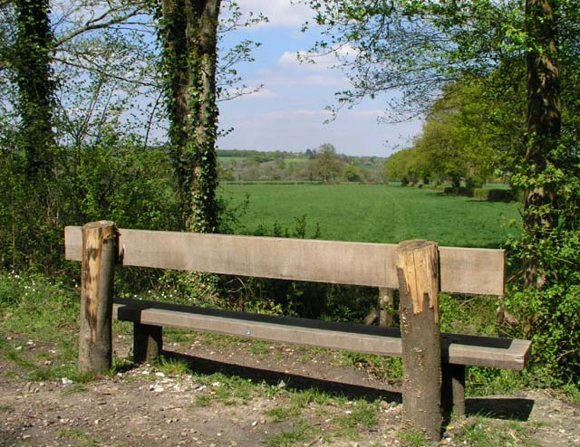 Seat on Downs Link - geograph.org.uk - 412103
