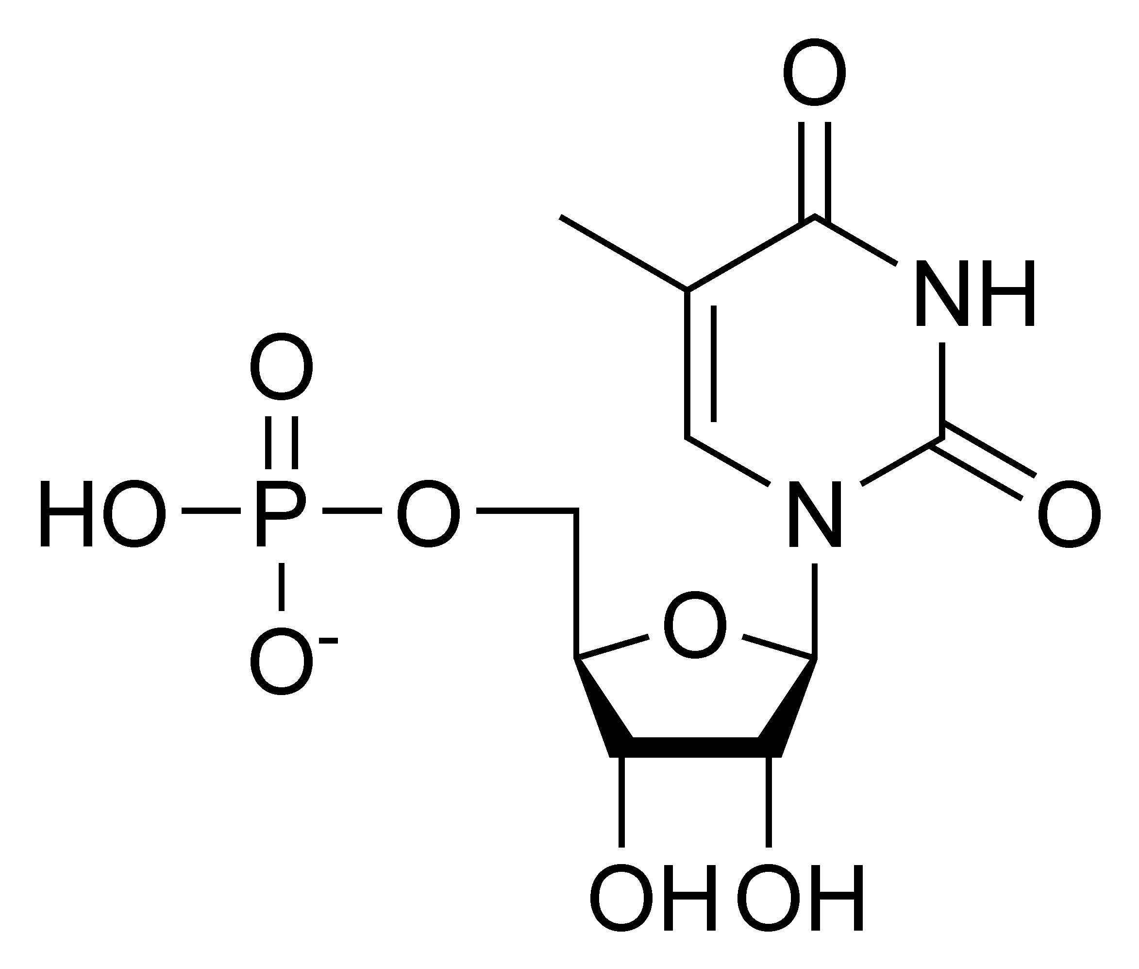 Chemical structure of thymidine monophosphate