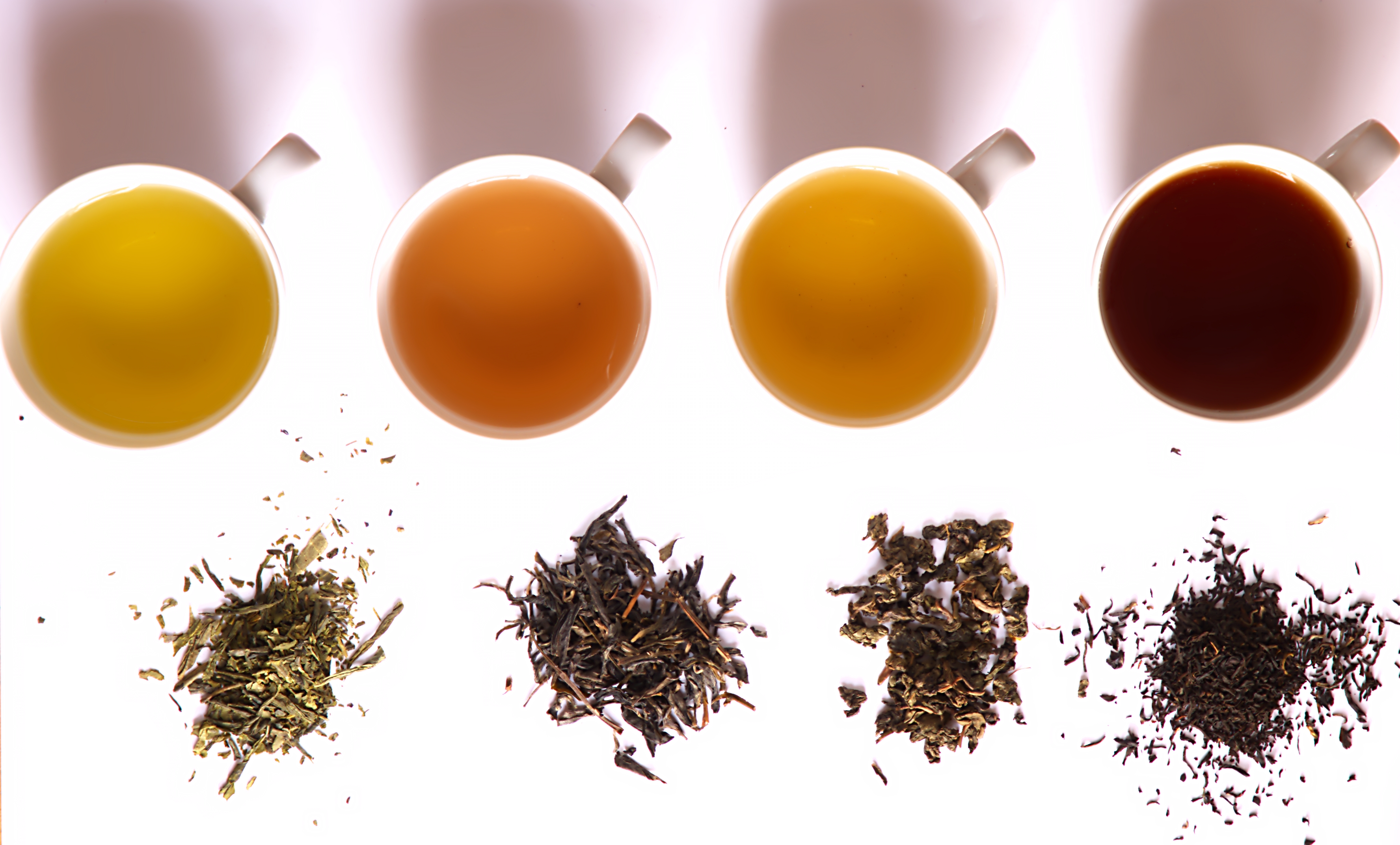 English: Tea of different fermentation: From left to right: Green tea (Bancha from Japan), Yellow tea (Kekecha from China), Oolong tea (Kwai flower from China) and Black tea (Assam Sonipur Bio FOP from India)