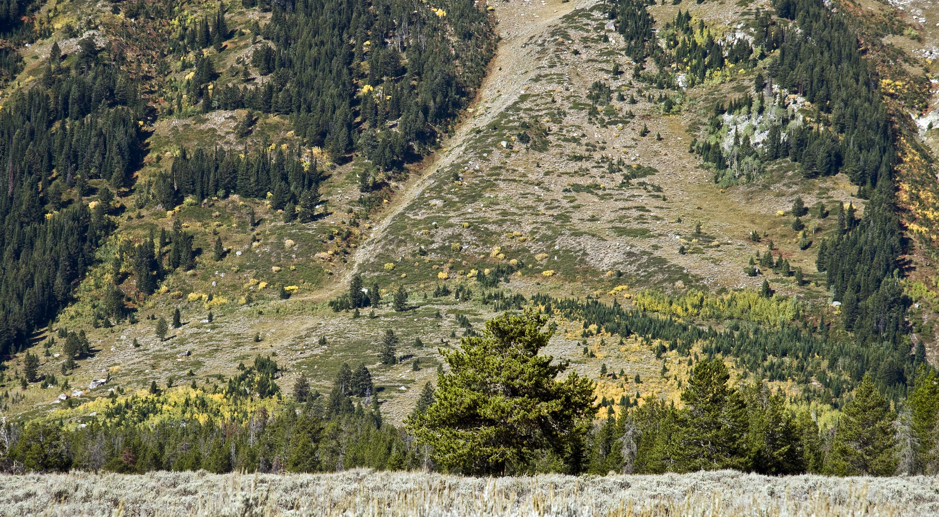 Jackson Hole Earthquake Jackson Hole[edit